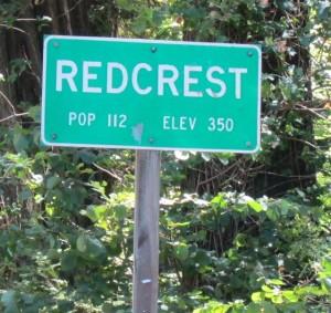 redcrest